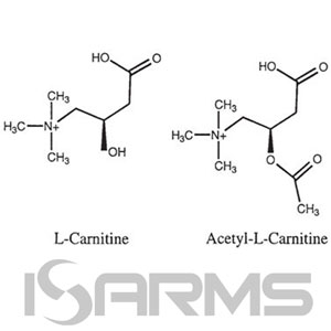 acetyl-L-Carnitine-L-Tartrate