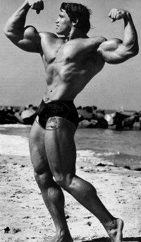 Arnold Alois Schwarzenegger Posing